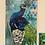 Thumbnail: Pretty Peacock Pieces