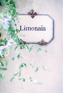 Luminous Fine Art Wedding Photography Italy