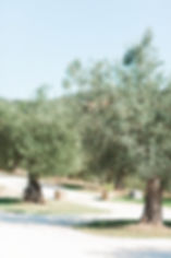 LAURA CHRIS ITALY 2018-9 CONTI DETAILS-0