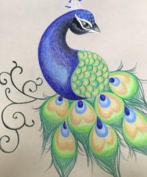 Peacock Drawing.JPG