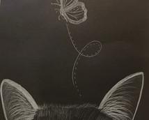 Cat white pencil butterfly.jpg