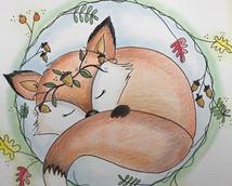 Fox Sleepy.jpg