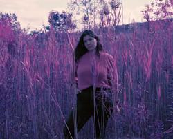 Purple Haze by Jays Shutter