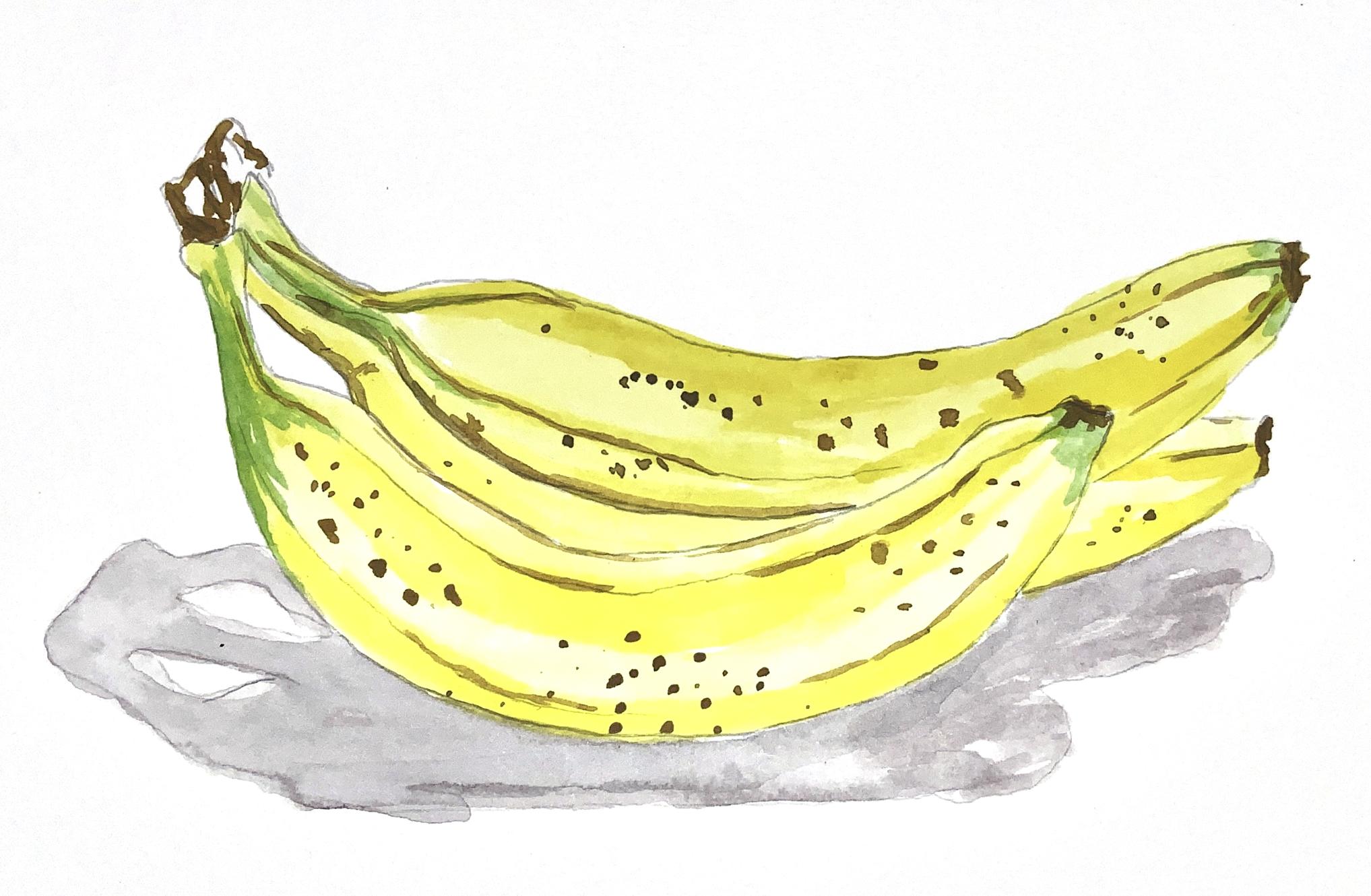 Bananas! by Sophia L Conradi
