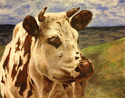 Cow by Sarah Stubbs