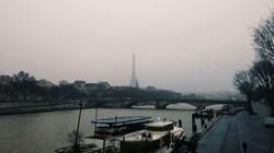 Paris Nights by K.G.