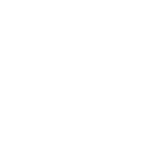 png.icons8.com-2 BLANC.png