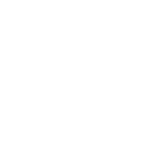 png.icons8.com BLANC.png