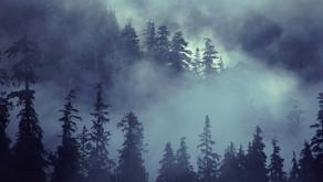 Samhain, The Mist Moon