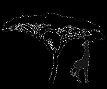 Acacia Logo.png