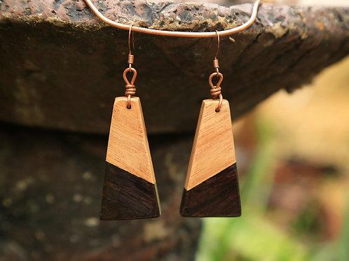 Trapezoid 2-Tone Earrings