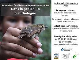 Flyer_animation_oiseaux.JPG