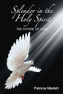 Splendor in the Holy Spirit-cover-web.jp