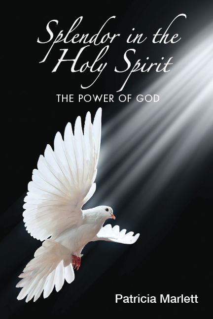 Splendor in the Holy Spirit-cover-web.jp