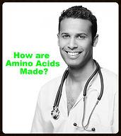 How are Amino Acids made ?