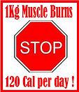 1 Kg Muscle Burns 120 calories