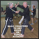 COUNTERS TO KICKS & PUNCHES