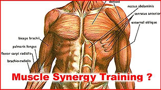 Muscle-synergy