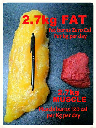 FAT BURNING Supplements (Click Here)