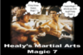 HEALYS MARTIAL ARTS MAGIC 7