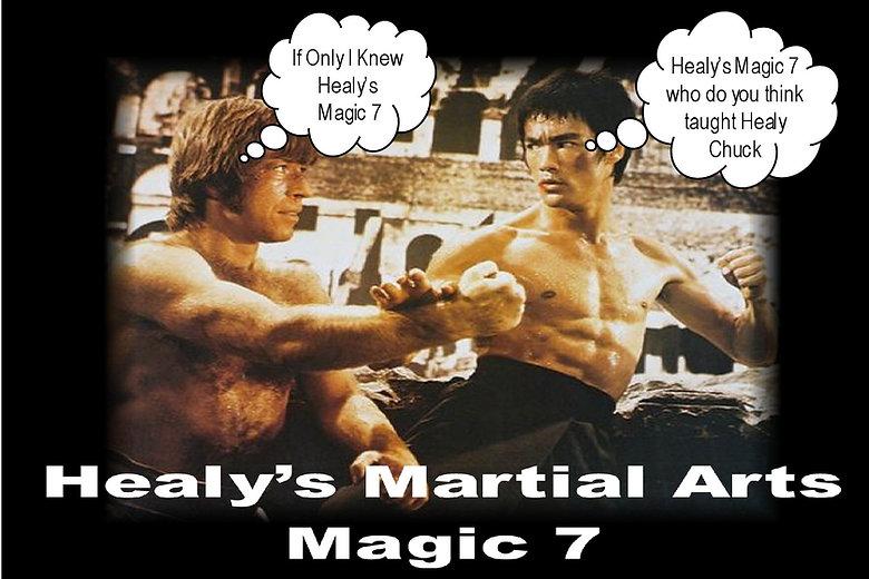 HEALYS MARTIAL ARTS MAGIC 7