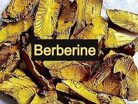 Berberine_edited.jpg