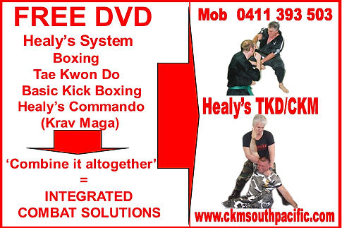 Healy's Integrated Combat Solutions Commando Krav Maga