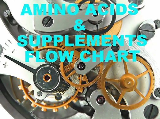 Amino Acids & Supplements Flow Chart