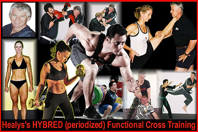 Healy's HYBRED(periodized) FUNCTIONAL CROSS TRAINING