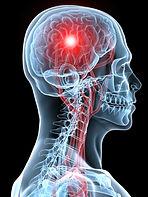Neuro factors
