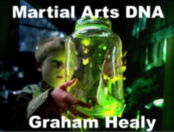 GRAHAM HEALY MARTIAL ARTS HISTORY