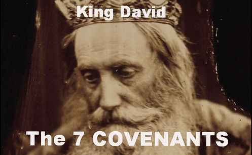 King David the 7 Convenants