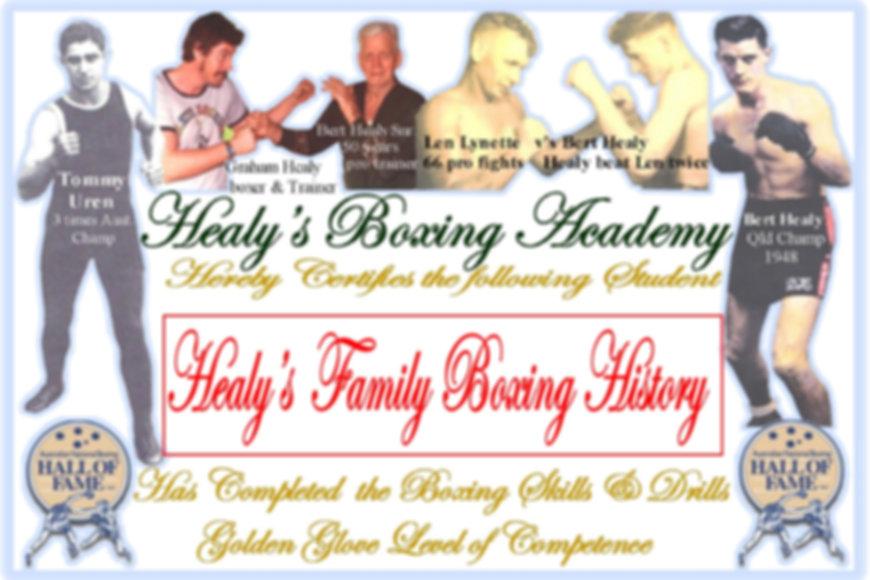 Healys Family Boxing History