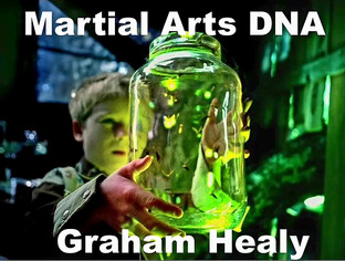 Martial Arts History of Graham Healy