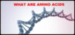 What are Amino Acids ?
