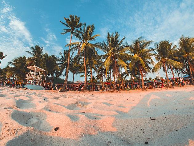 Boracay Sand and Trees.jpg