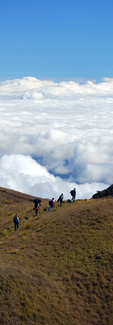 Sea of Clouds Daytime, Mount Pulag.jpg