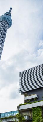 Tokyo SkyTree.jpg