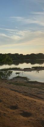 Yalla National Park, Morning Safari.jpg