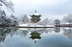 Gyeongbok Palace Winter