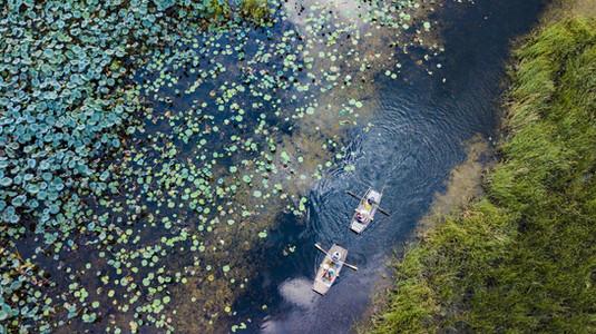 Van Long Wetlands