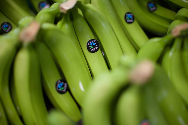 Fairtrade_bananas.jpg