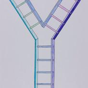 laddersplit.jpg
