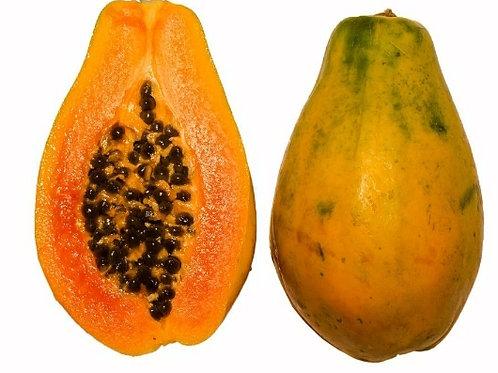 Papaya Mayoreo