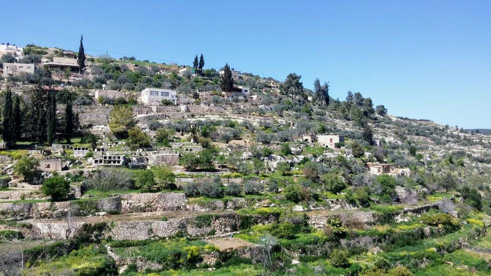 Una giornata in Palestina: Battir e Beit Jalla