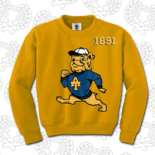 Vintage A&T Sweatshirt