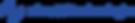 logo zinetti blu.png
