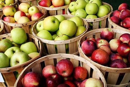 apples1.jpeg