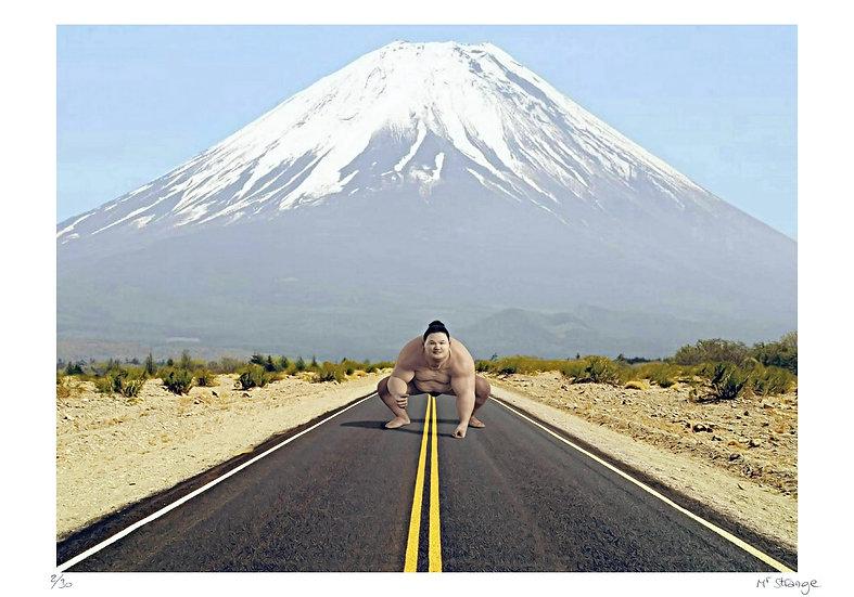 Mr Strange - Le Gardien du Mont Fuji