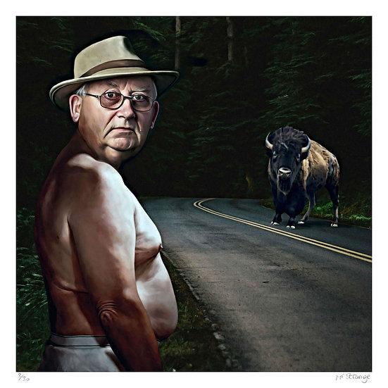 Mr Strange - Buffalos III
